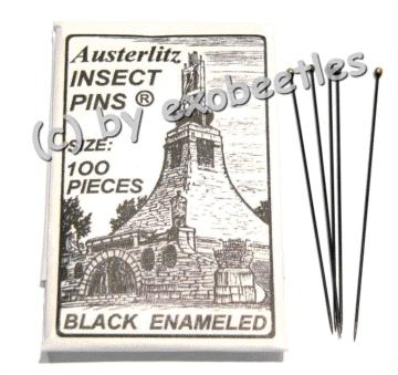 Insektennadeln Gr. 1