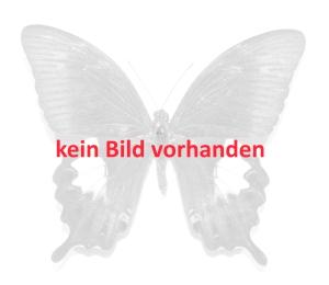 50 Schmetterlinge ( gute Arten )  A2