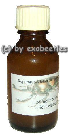 Insekten-Reparaturleim