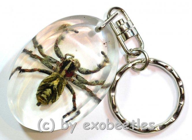 Schlüsselanhänger Spinne